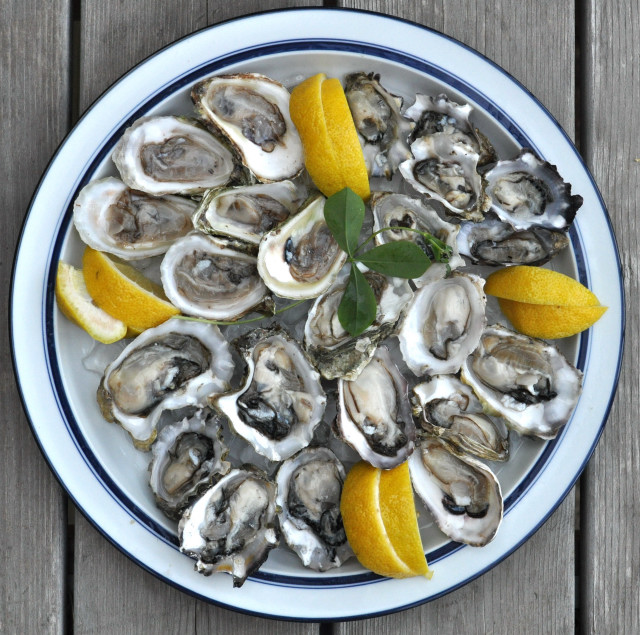 oysters on the half shell foodwineclick