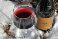 iOTA Cellars Pinot Noir is a beautiful transparent garnet