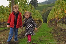 Future winegrowers