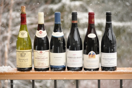 Our red Burgundy wines