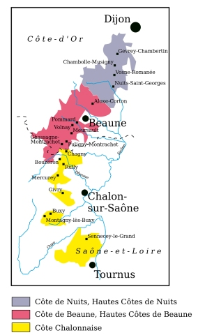 Our virtual drive south to north through the Côte de Beaune and the Côte d'Nuits