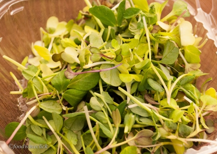 A sample of pea shoots and micro-greens