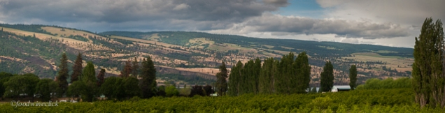 The Memaloose winery and Mistral Ranch vineyard are across the Columbia.