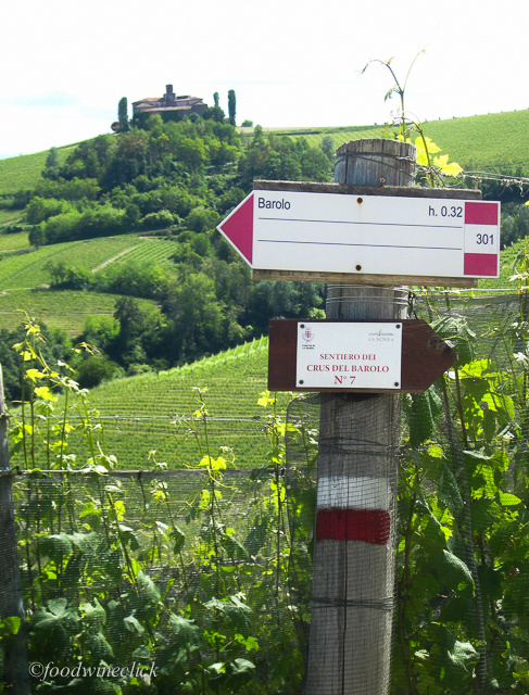 Trail signs in Langhe vineyards show you the way, complete with time estimate