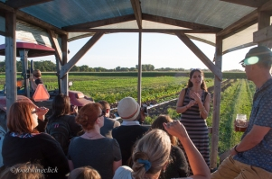 Farm tour with the Organic Farm School