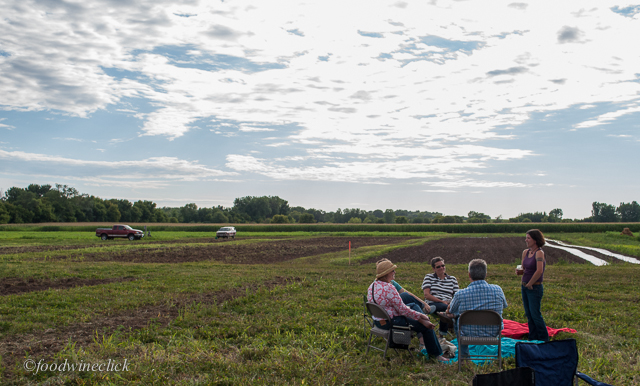 picnic - ers out in the field