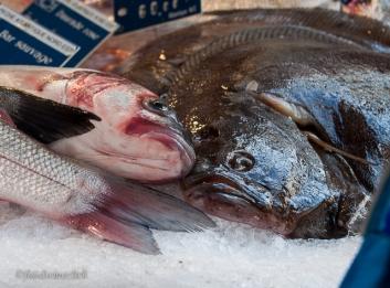 Fresh fish at Rue Cler