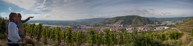Jean-Louis Chave vineyards at Hermitage