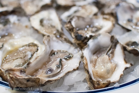 Oysters from the Hammersly inlet on the Puget Sound