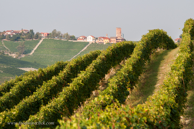 Vineyards cover the hillsides, and the next town is not far away.