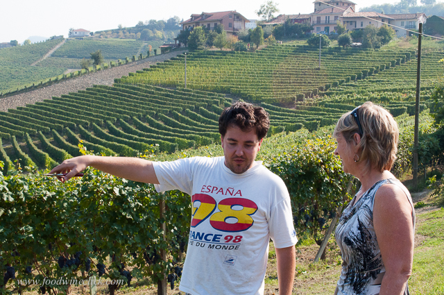 Nicola invited us to join him in his section of vineyard in the Rocche de la Annunziata