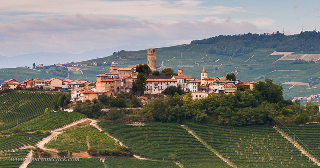 Beautiful Barolo Region!