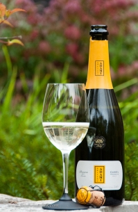Adami is a very good Prosecco producer with a number of different wines.