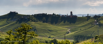 Barbaresco in the afternoon