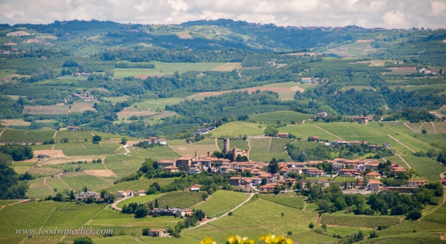 As you drive to visit, you may need to pull over for a minute, just to enjoy the view (Castiglione Falleto)