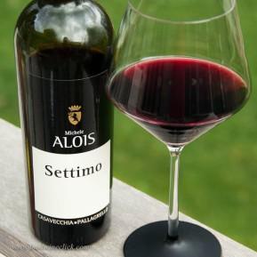 Settimo is a blend of Casavecchia and Pallagrello Nero