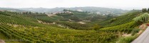 The view from Cantina del Briccheto including some of Franco & Susan's vineyards.