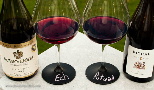 Are Chilean Pinot Noirs worth a try?