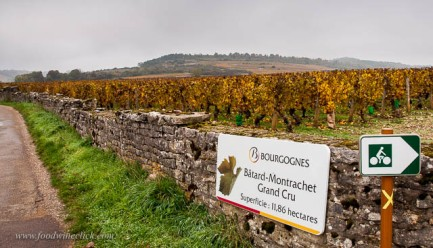 Keep your eyes peeled, on the way from Chassagne-Montrachet to Volnay, you may see this. Grand Cru!