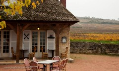 A charming place right next to the vineyards of Volnay