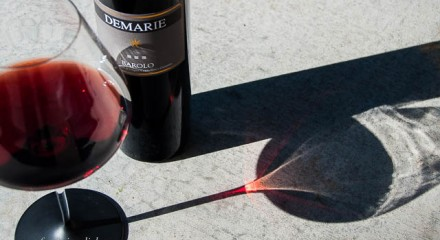 Sunlight streaming through Demarie Barolo