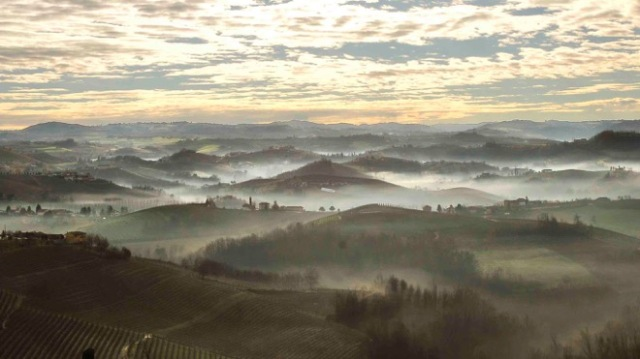The famous Nebbia (fog) of Piemonte. (Photo credit: Pierangelo Vacchetto)