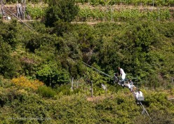 Vineyard/Inn owners transport beachgoers on the same rails as the fall harvest