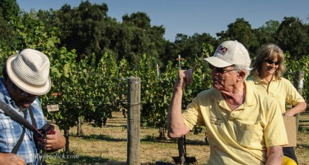 Bob Koth, family patriarch with a crazy desire to grow German and Austrian grapes in Lodi. Look at the wry smile on his daughter in the background...