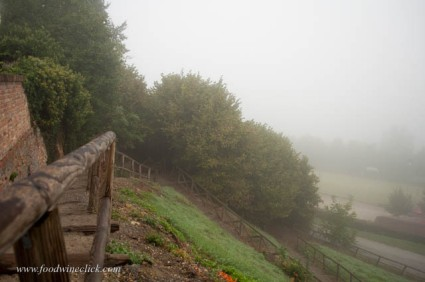 Walk around the village in the fog