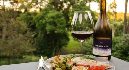 Resonance Pinot Noir paired with grill roasted chicken