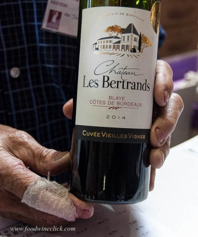 the hands of the winegrower