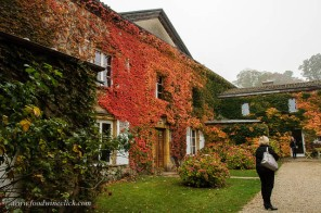 chateau buffavent in Beaujolais