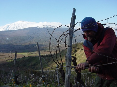 Frank Cornelissen working near Mt. Etna