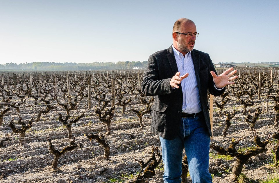 Pierre Montegut of Chateau Suduiraut in the estate vineyard
