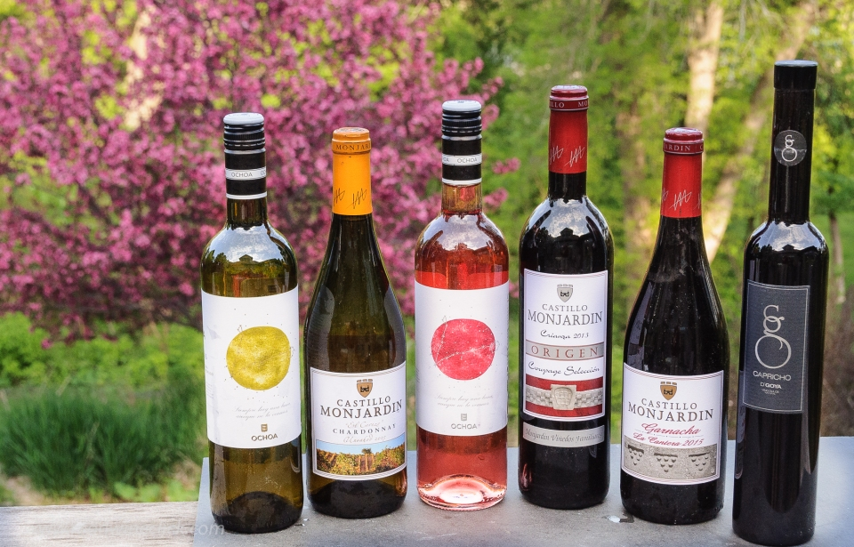 A variety of wines from Navarra Spain
