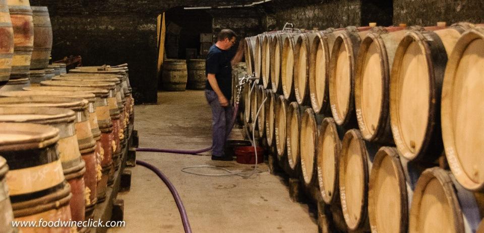 Cellar work at Louis Max in Burgundy