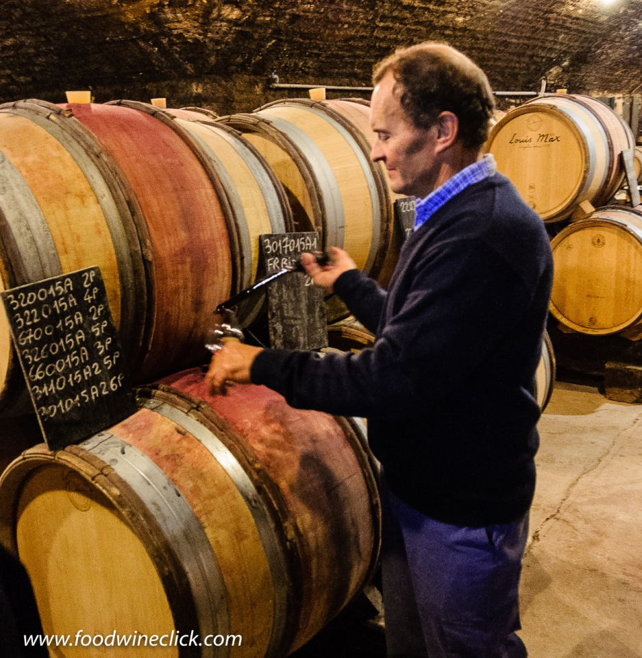 Cellar at Louis Max in Burgundy
