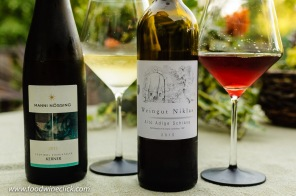 Unique wines from the mountainous Alto Adige region of Northern Italy