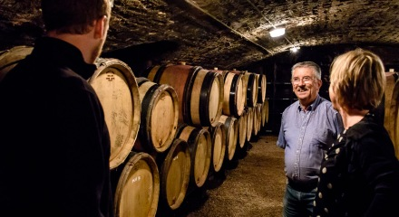 Aging wines at domaine Albert Boillot in Volnay