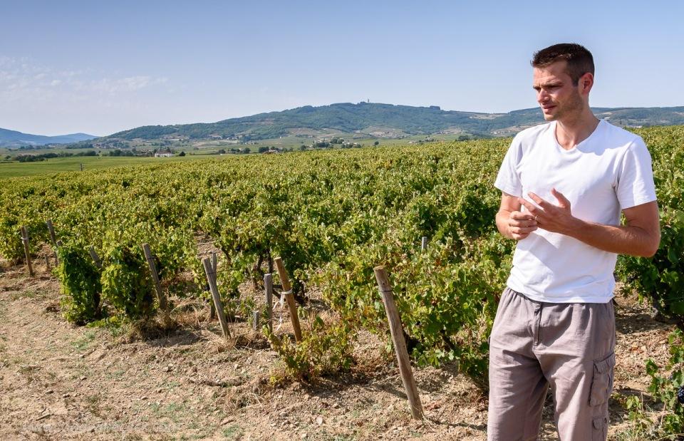 In the Morgon vineyard of Domaine de la Bonne Tonne