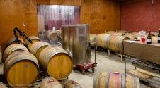 Castelli Vineyards winery