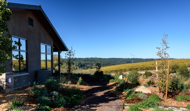 The Littorai winery and Pivot vineyard