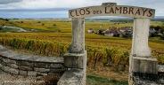 Clos des Lambrays Grand Cru Vineyard in Morey-Saint-Denis