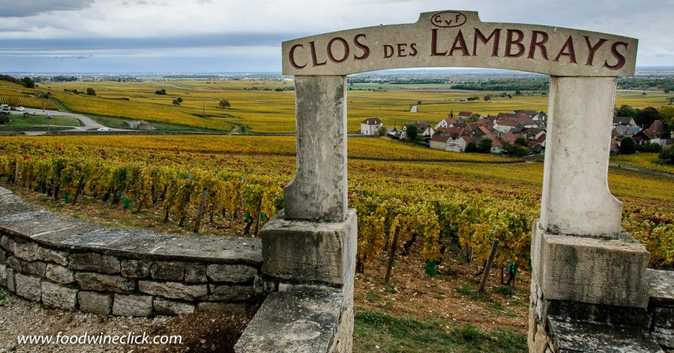 Clos des Lambrays Grand Cru Vineyard in Morey-Saint-Denis