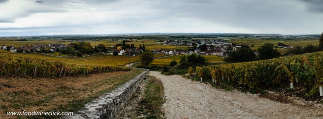 Look carefully at the soil on either side of this lane. Grand Cru Clos des Lambrays on the left, village level vineyard above Clos de Tart on the right