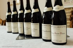 Village wines from Gevrey-Chambertin & Morey-Saint-Denis, 1er Cru from Morey-Saint-Denis, and Grand Cru Clos de la Roche