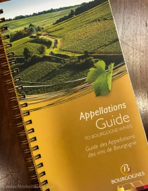 Your first stop in Burgundy is to the Tourist Office in Beaune. Pick up a copy of the Appellations Guide (around 20 €). You can thank me later.