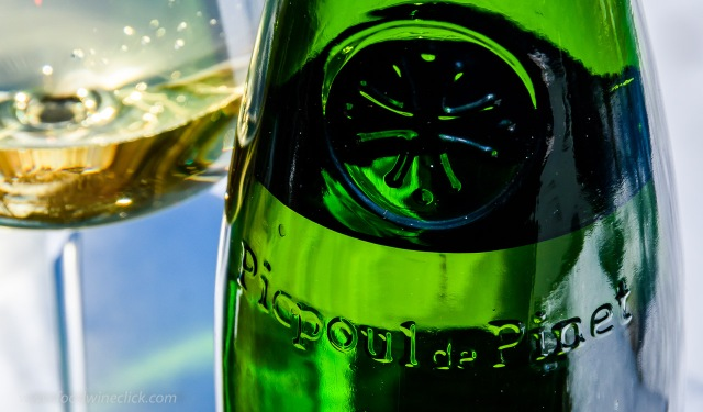 Embossed bottle of Picpoul de Pinet