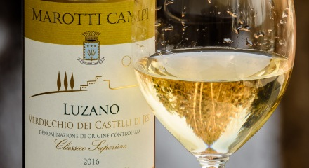 Get to know Verdicchio at www.foodwineclick.com