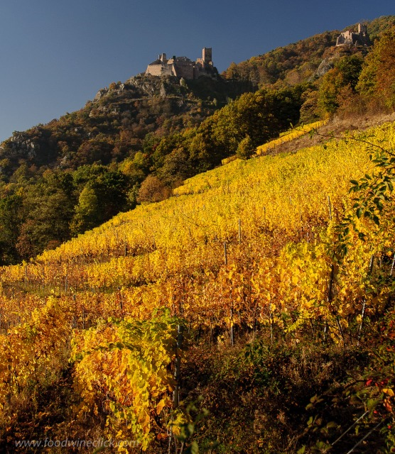 Even if you can't get to Alsace, you can visit virtually with a bottle of Alsace wine. Great ideas at www.foodwineclick.com